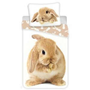 Jerry Fabrics Detské bavlnené obliečky Bunny brown, 140 x 200 cm, 70 x 90 cm