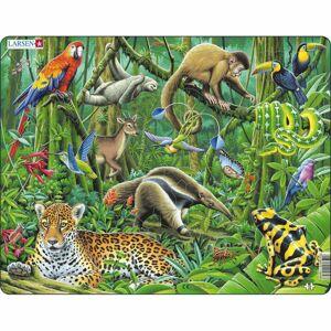 Larsen Puzzle Dažďový prales Južnej Ameriky, 70 dielikov